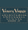 a decorative typeface in grunge style vector image