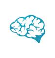 Brain Logo Template vector image vector image