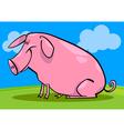 cartoon farm pig vector image