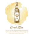craft beer bottle with label monochrome sketch vector image vector image