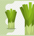 fresh vegetable chives on dots background vector image