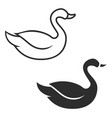 swan icon isolated on white background design vector image