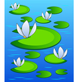 lilies background vector image