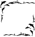 square monochrome frame with dolphins vector image