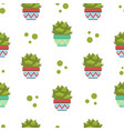 cactus in flower pot seamless pattern design vector image