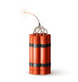 dynamite bomb with burning wick military detonate vector image vector image