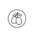 goji berries line icon on white vector image