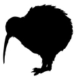 kiwi bird vector image
