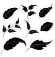 Leaves black silhouettes vector image vector image
