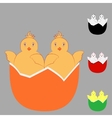 Two in one chicken egg vector image vector image