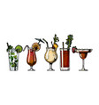 alcohol cocktails set vector image
