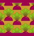beets grow seamless pattern vegetable on garden vector image