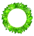 Fresh green leaves border vector image