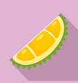 natural eco durian piece icon flat style vector image vector image