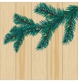 Sprig of blue spruce on a background of wood vector image vector image