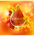 abstract bright drop vector image vector image