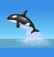 cartoon orca jumping on the blue ocean background vector image vector image