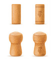 corkwood cork for wine and champagne bottle vector image