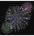 isolated fireworks on transparent vector image vector image