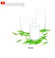 Kymyz or Kyrgyzstan Fermented Horse Milk vector image vector image