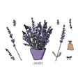 Lavender set composition in doodle style