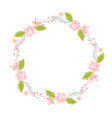 spring flower herbs wreath flat abstract vector image vector image