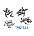Swimming turtles set vector image vector image