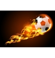 Soccer ball fire on black background vector image