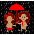 A couple of funny hedgehogs under red umbrella vector image vector image