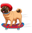 a dog plying skateboard vector image