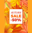 autumn sale -50 off icon vector image vector image
