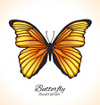 Bright hand drawn butterfly vector image vector image