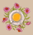 cup of echinacea tea vector image vector image