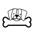 cute beagle dog and bone vector image