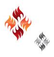 flame logo icon vector image