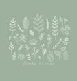 floral leaves set green vector image vector image