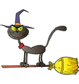 Halloween Witch Cat vector image vector image
