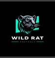 head rat vector image vector image