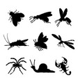 insect animal icon flat isolated bug ant vector image