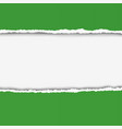 two pieces of torn green color paper vector image vector image