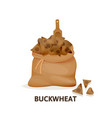 bag of buckwheat cereals wooden spoon vector image vector image