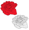 beautiful monochrome and color sketch rose flower vector image