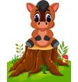 cartoon horse sitting on tree stump vector image