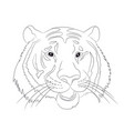 portrait of tiger lines vector image vector image