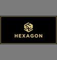sy hexagon logo design inspiration vector image vector image