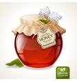 Buckwheat honey jar vector image