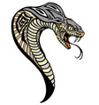 cobra snake head vector image vector image