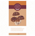 package design for dried sliced shiitake mushrooms vector image vector image