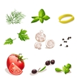 Set of vegetables on a white background dill vector image vector image
