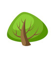 spring or summer stylized tree with green leaves vector image